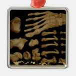 Anatomical drawing of the bones of the foot square metal christmas ornament
