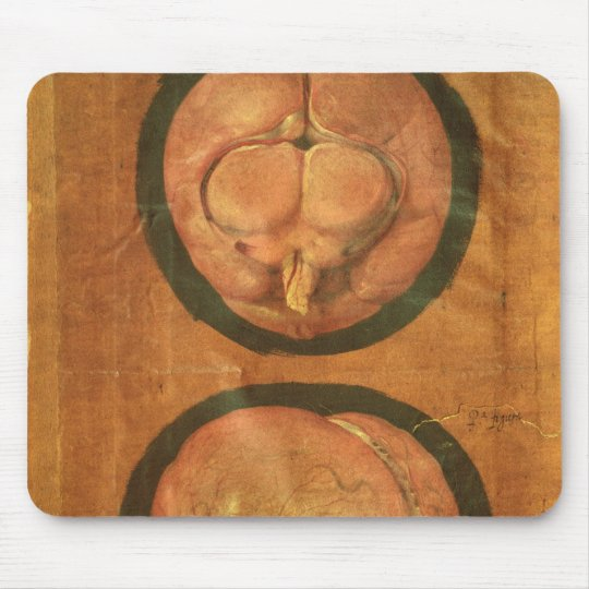 Anatomical drawing of the human brain mouse pad