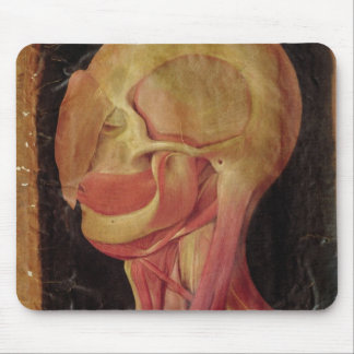 Anatomical drawing of the human head mouse pad