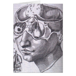 Anatomical Face with Musculature Greeting Card
