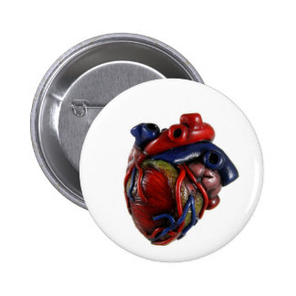 Anatomical Heart 2 Inch Round Button