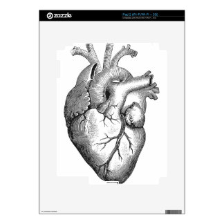 Anatomical Heart Decal For The iPad 2