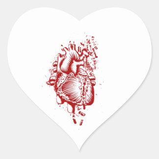Anatomical Heart Heart Sticker