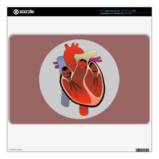 "ANATOMICAL HEART Laptop Skin 11"" MacBook Air"
