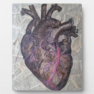Anatomical heart, original painting plaque