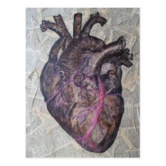 Anatomical heart, original painting postcard