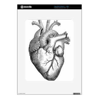 Anatomical Heart Skins For iPad