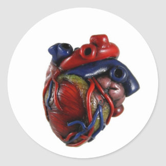 Anatomical Heart Round Stickers