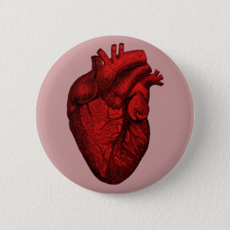 Anatomical Human Heart Button
