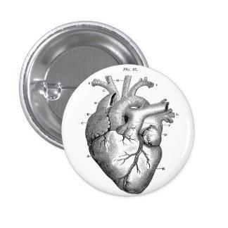 Anatomical Human Heart Diagram button pin