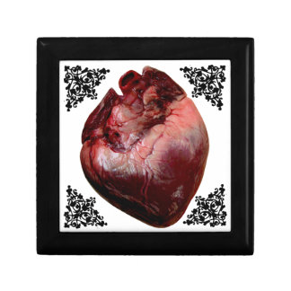 Anatomical Human Heart Gothic Jewelry Box