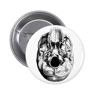 Anatomical Human Skull Base Black & White Pinback Button
