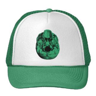 Anatomical Human Skull Base Green Hat