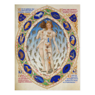 Anatomical Man in Duke Berry's Très Riches Heures Postcard