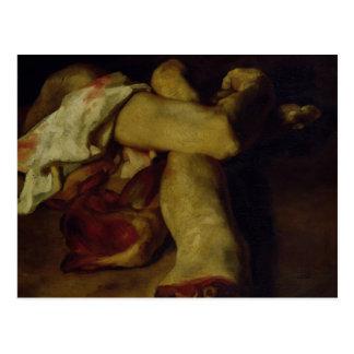 Anatomical Pieces Postcard