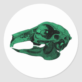 Anatomical Rabbit Skull Green Classic Round Sticker