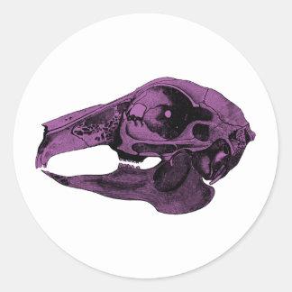 Anatomical Rabbit Skull Purple Classic Round Sticker