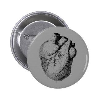 Anatomically Correct Heart Pinback Button