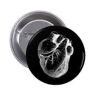 Anatomically Correct Heart Pinback Buttons
