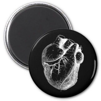 Anatomically Correct Heart Magnet