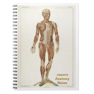 Anatomy Anterior Spiral Notebook