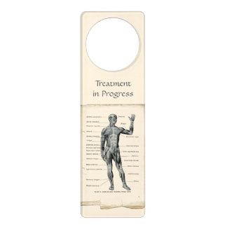 Anatomy Anterior Vintage Drawing Door Hanger