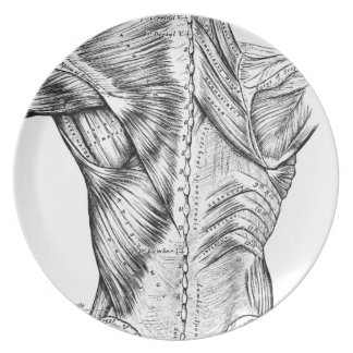 Anatomy Art Black and White  Back Muscles (1890) Melamine Plate
