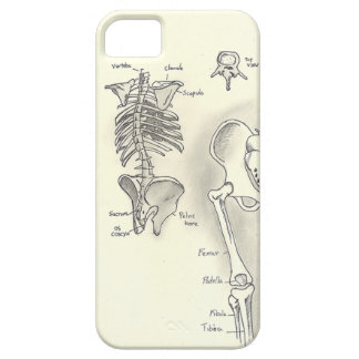 Anatomy iPhone 5 Case
