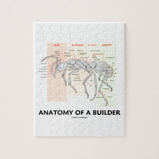 Anatomy Of A Builder (Worker Ant Anatomy) Puzzle