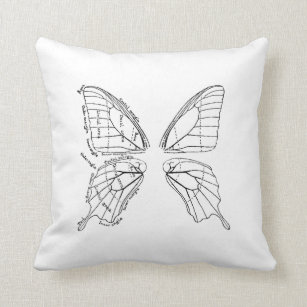 Butterfly Diagram Gifts on Zazzle