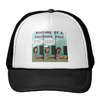 Anatomy Of A facebook Post Funny Hat