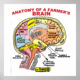 ANATOMY OF A FARMER'S BRAIN POSTER