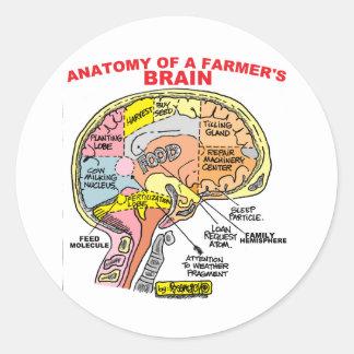 ANATOMY OF A FARMER'S BRAIN STICKERS