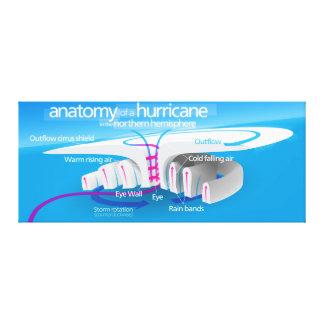 Anatomy of a Hurricane Diagram Canvas Print