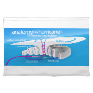 Anatomy of a Hurricane Diagram Cloth Placemat