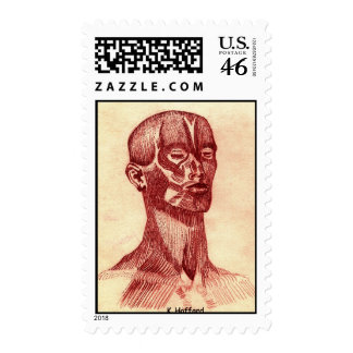 Anatomy of a Man Stamps