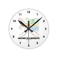 Anatomy Of A Mosquito (Entomology) Round Wallclock