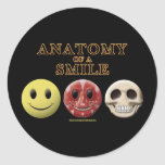 Anatomy of a Smile Classic Round Sticker