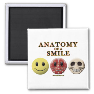 Anatomy of a Smile Magnets