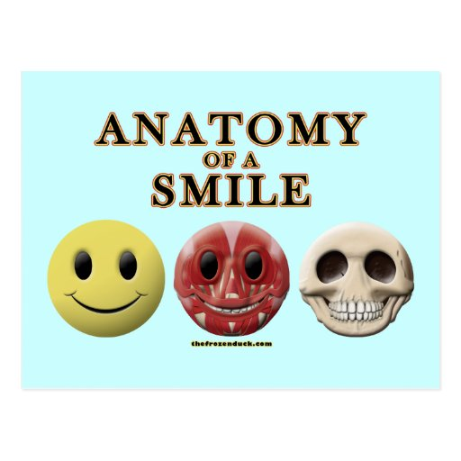 Anatomy of a Smile Postcard