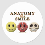 Anatomy of a Smile Stickers
