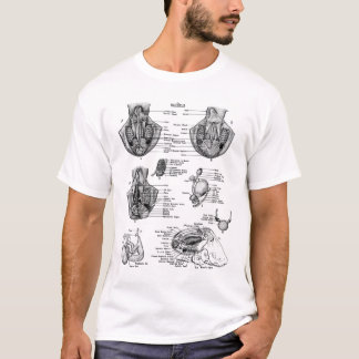 Anatomy of an Oct8pus T-Shirt
