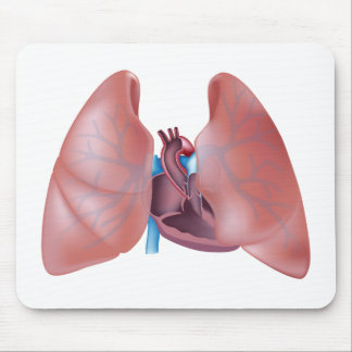 Anatomy of heart and lungs Mousepad