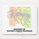 Anatomy Of Nature's Finest Engineer (Entomology) Mouse Pads