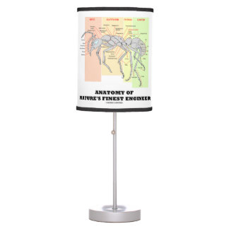 Anatomy Of Nature's Finest Engineer Worker Ant Desk Lamp