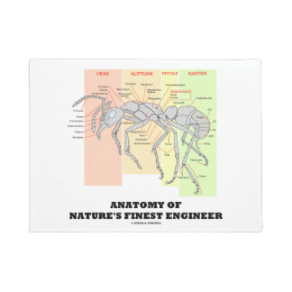 Anatomy Of Nature's Finest Engineer Worker Ant Doormat