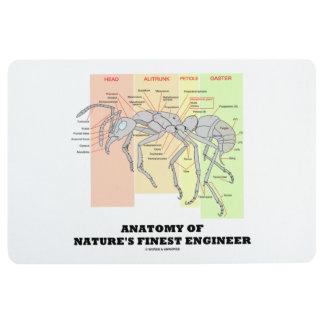 Anatomy Of Nature's Finest Engineer Worker Ant Floor Mat