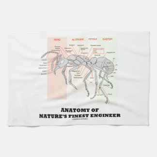 Anatomy Of Nature's Finest Engineer (Worker Ant) Hand Towel