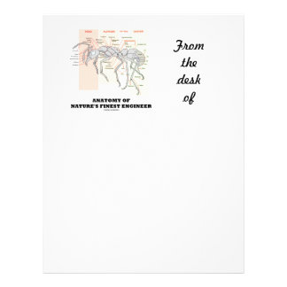 Anatomy Of Nature's Finest Engineer (Worker Ant) Letterhead
