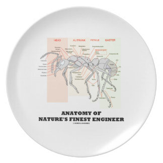 Anatomy Of Nature's Finest Engineer (Worker Ant) Melamine Plate
